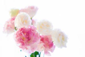 柔軟剤の香りの種類と特徴は?