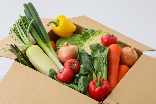 一人暮らし・単身者の食材宅配の選び方